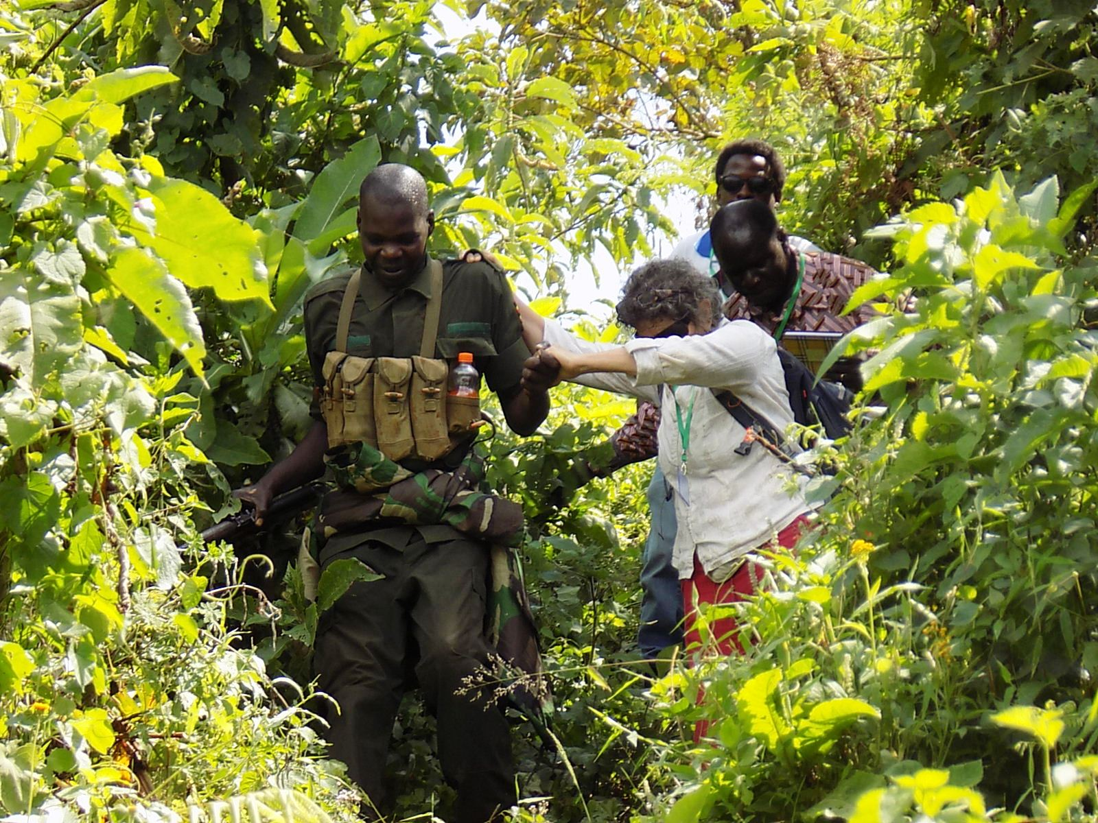 UWA ranger helps a tourist to wade through part of the recovered forest at Bubiita range in Bududa district. (PHOTO/File)