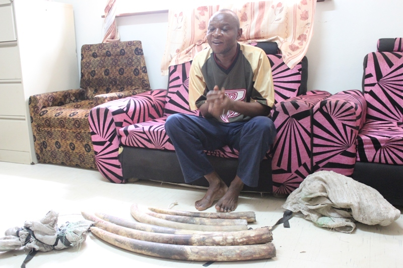 The illegal ivory dealer