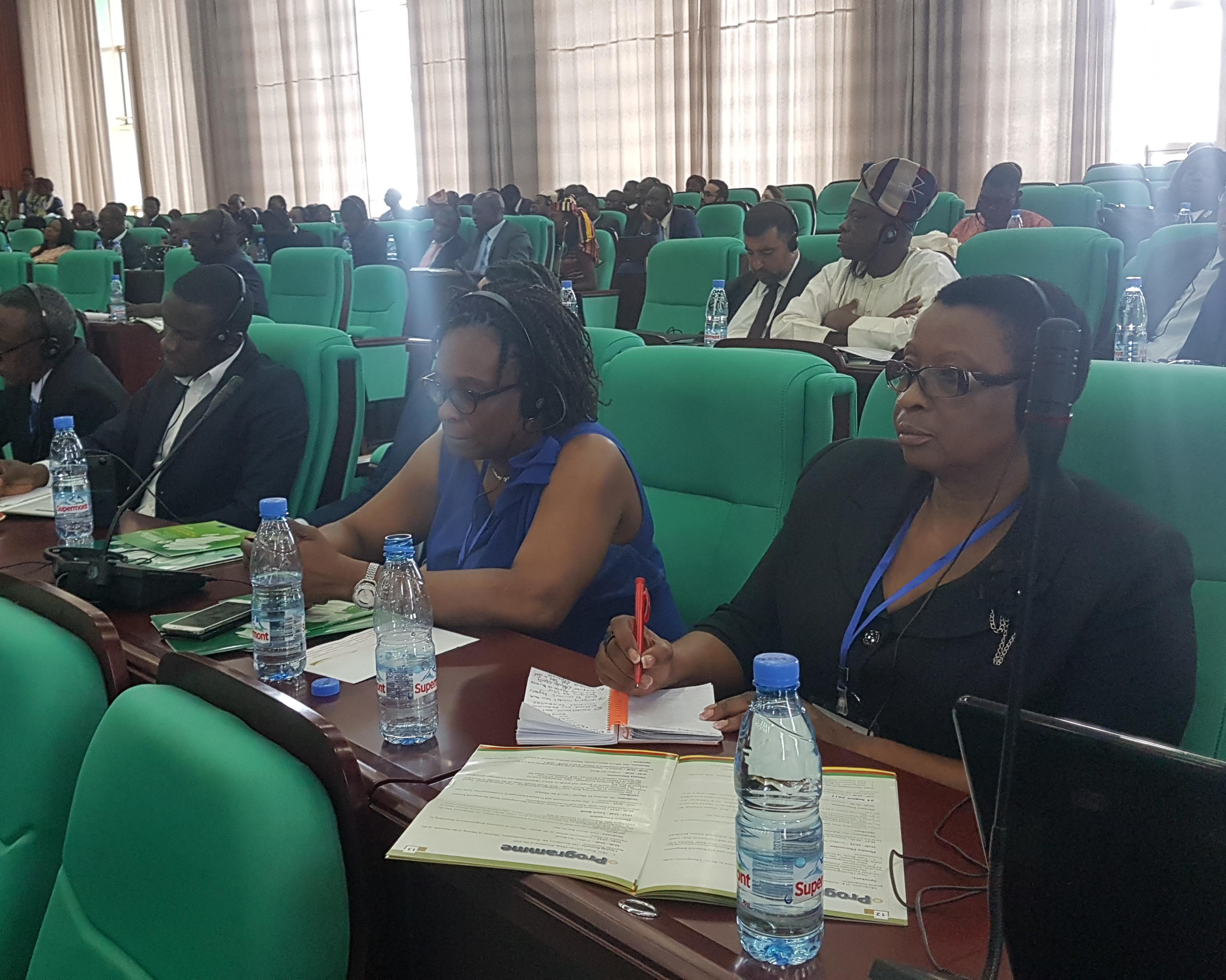 Ssembabule woman MP Anifa Kawooya attending the mining conference in Yaounde. Courtesy photo.