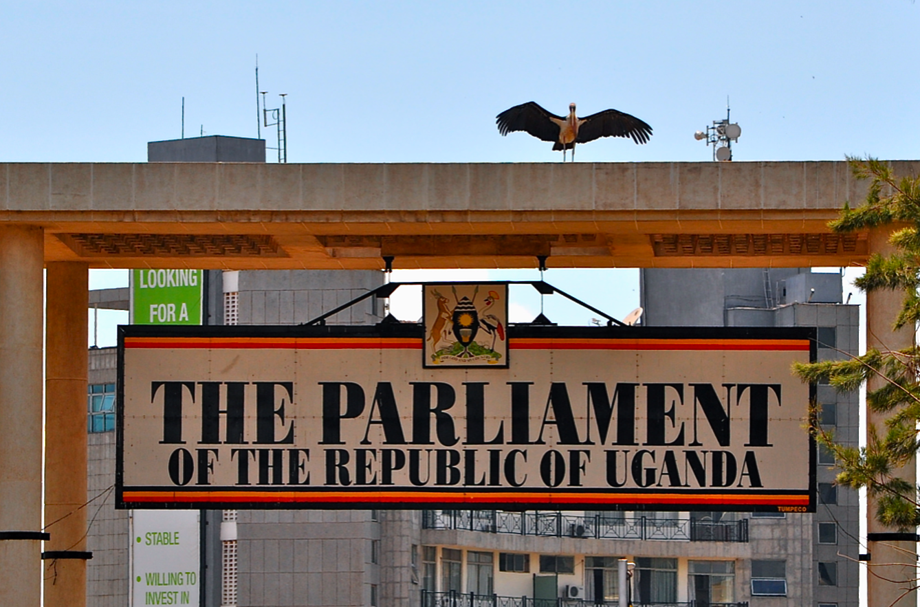 Wangudi wants Parliament to hold recruiting another person to a position for which he had qualified.