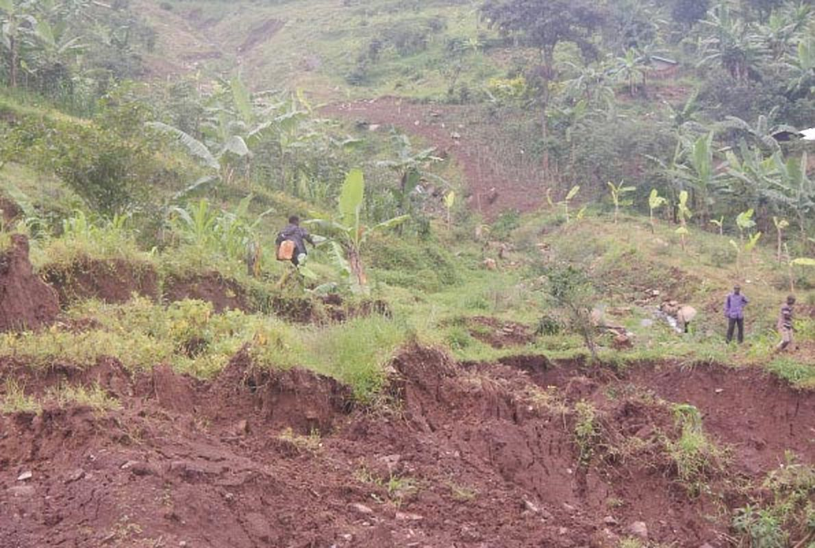 Effects of climate change such as malaria cases have affected people living in the mountain regions in Uganda (DMAFABI PHOTO)