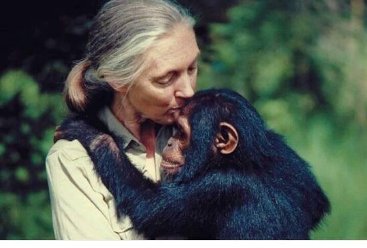 Jane Goodall, the British Primatologist.