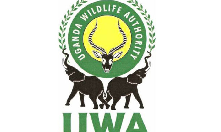The Uganda Wildlife Authority (UWA) has been ordered to stop evicting encroachers in Mount Elgon National Park.