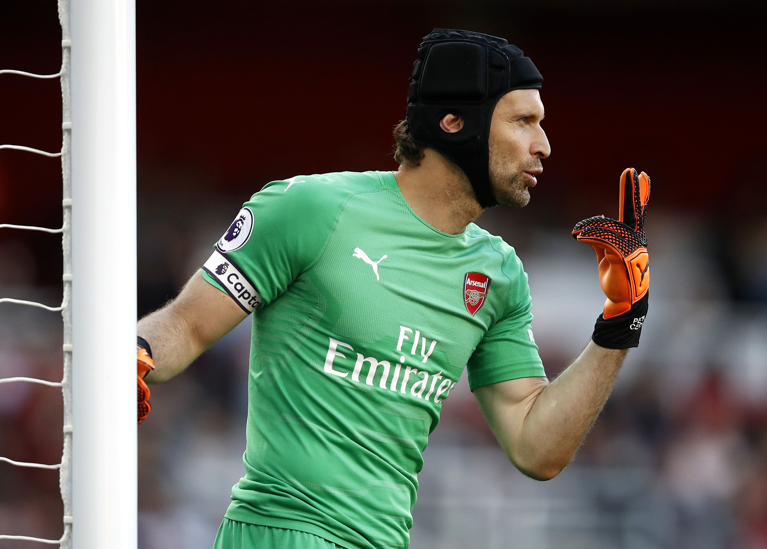 Cech made six saves in Arsenal's 2-0 victory over Everton on Sunday