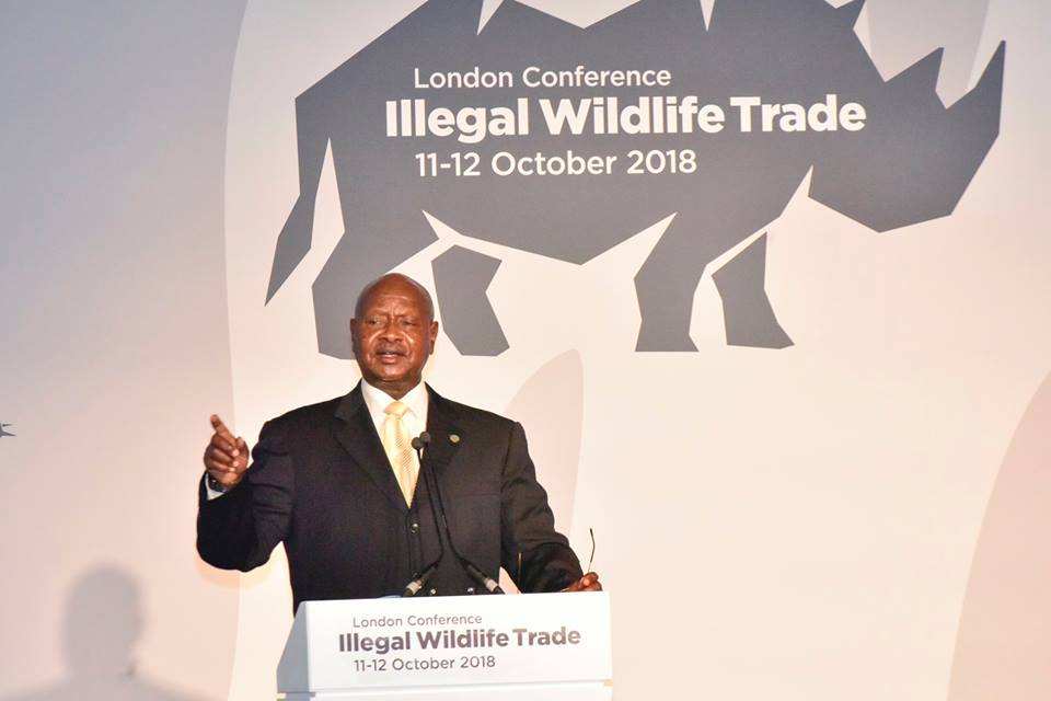 Addressed the International Conference on Illegal Wildlife Trade in London today.