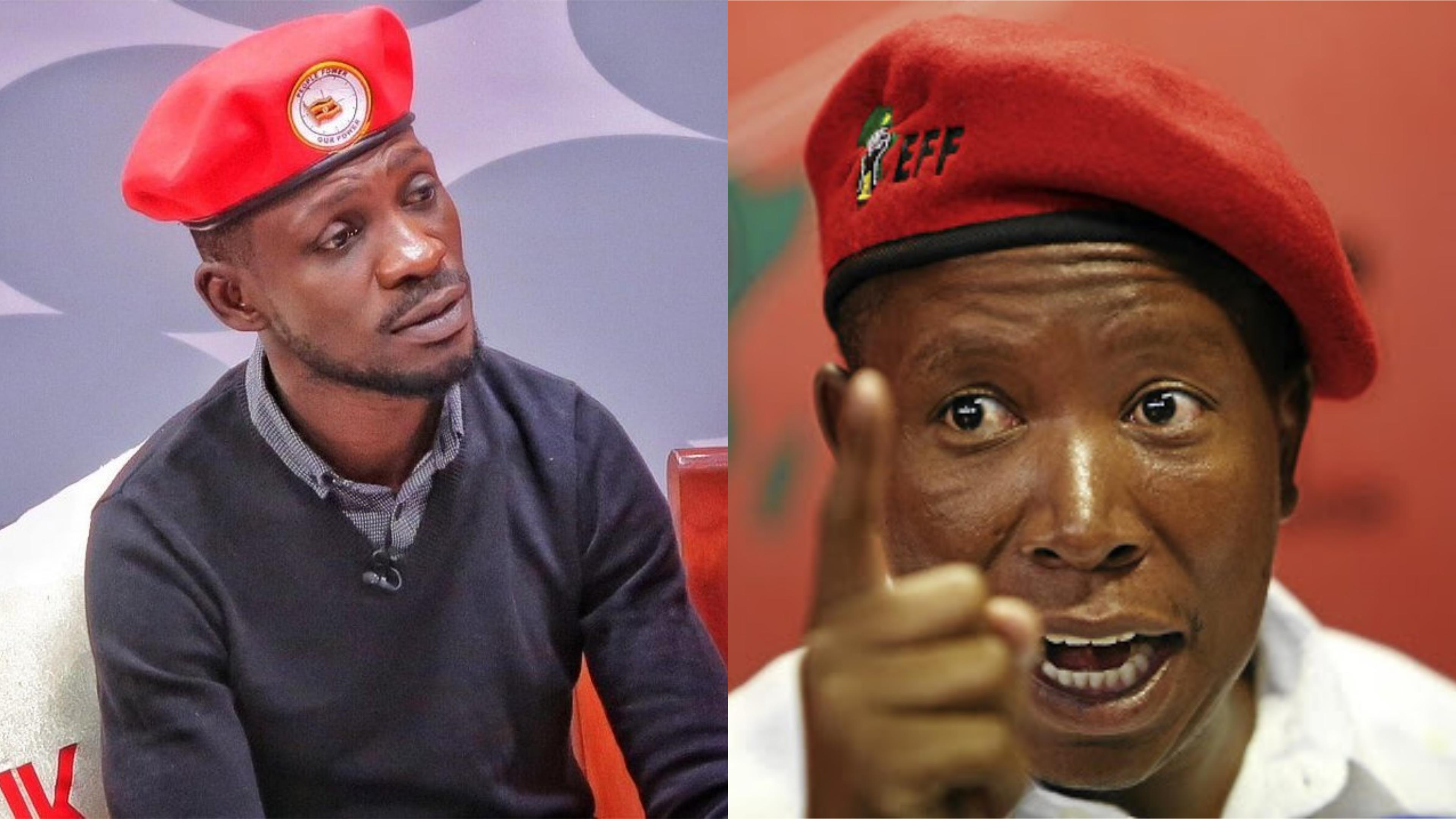 'Youth for African Movement' was last week formed with Kyadondo East MP Robert Kyagulanyi (Bobi Wine) [L], Julius Malema of South Africa [R] and Nelson Chamisa of Zimbabwe, as its pioneers (FILE PHOTO)