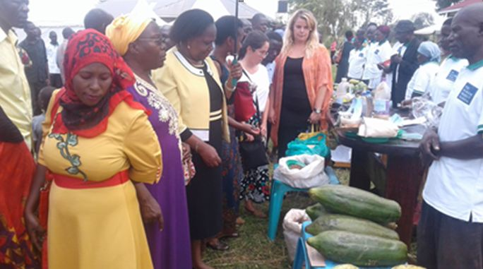 Guests touring exhibition stalls during the agro-ecological project launch in Iganga