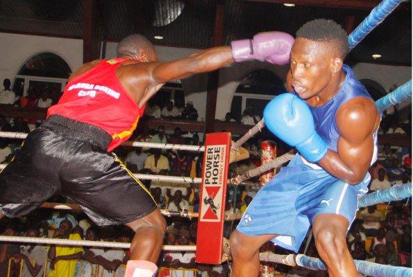 Over 500 Boxers are expected to take part in this year's National Open (Photo by Agency)