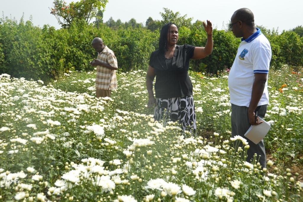 Abigil Mwesigwa in the floriculture project funded by UWEP