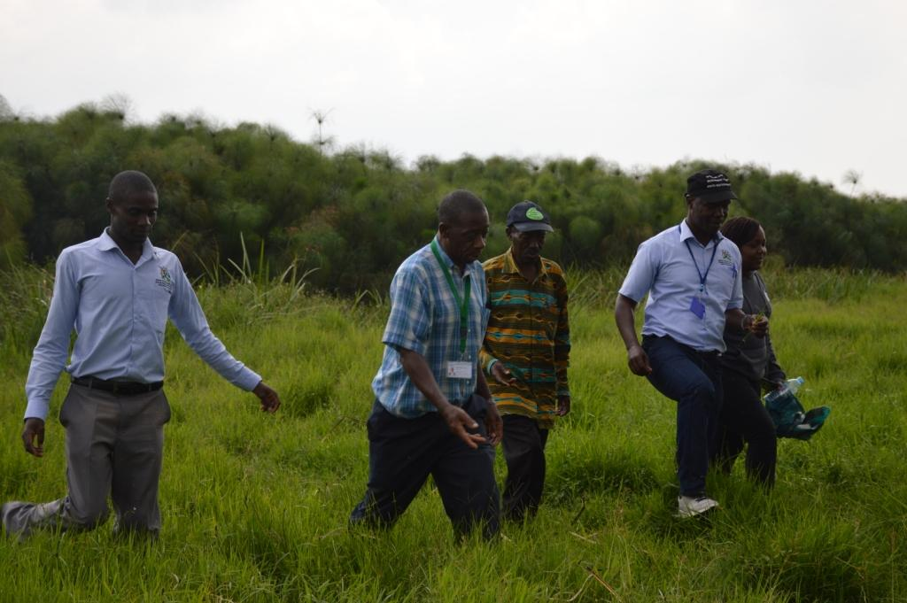 Ministry of water and environment officials at Nyakambu swamp which had been turned into farmland but now is being restored back.