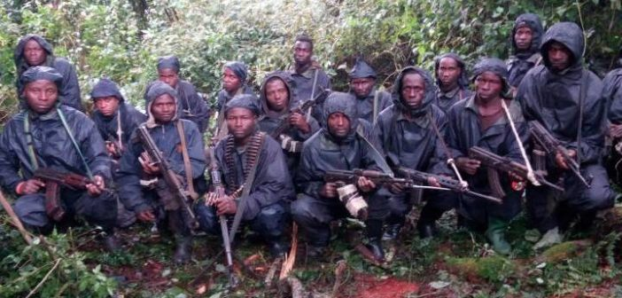 Rwandan opposition rebel fighters National Liberation Front (FLN) have outrun government forces and taken the northern district of Nyamasheke (AGENCIES PHOTO)