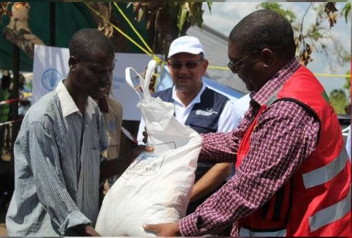 Food and Agriculture Organization (FAO) starts distribution of much-needed seeds and tools in cyclone-ravaged Mozambique