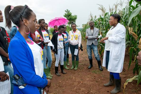 New firm has launched initiative to empower youth into agrifood business. (PHOTO/File)