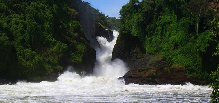 Murchison Falls National Park lies at the northern end of the Albertine Rift Valley, where the sweeping Bunyoro escarpment tumbles into vast palm-dotted Savannah.  (PHOTO/File)