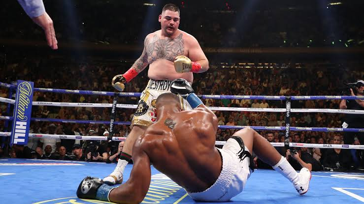 Joshua was knocked down four time by Ruiz. (PHOTOS/AGENCY)