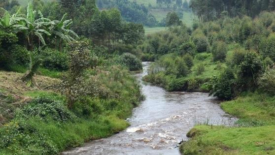 River Rwizi in Mbarara district. (PHOTO/File)