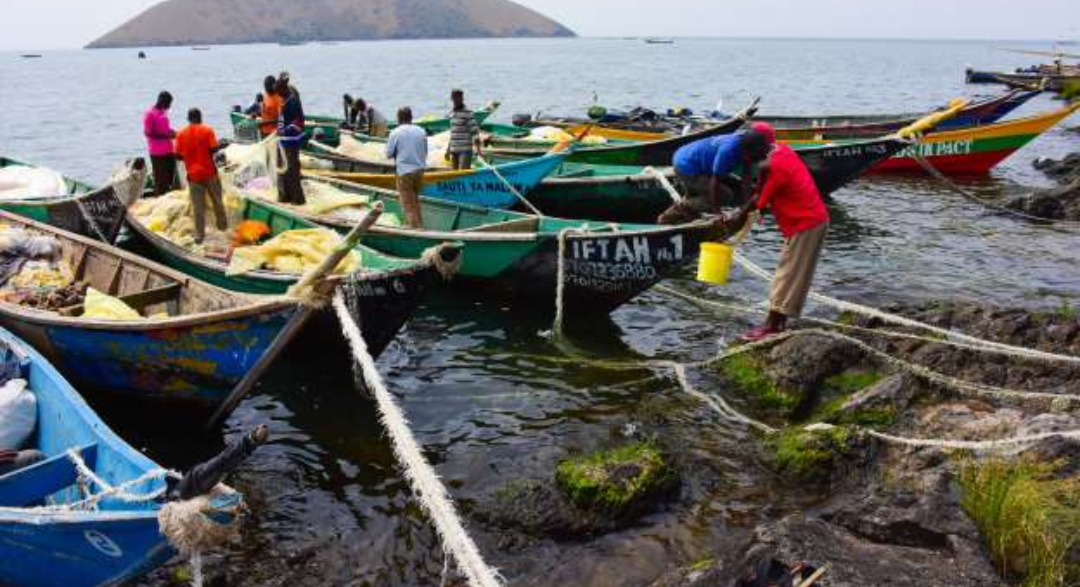 Fishermen prepare to go and set their fishing nets.