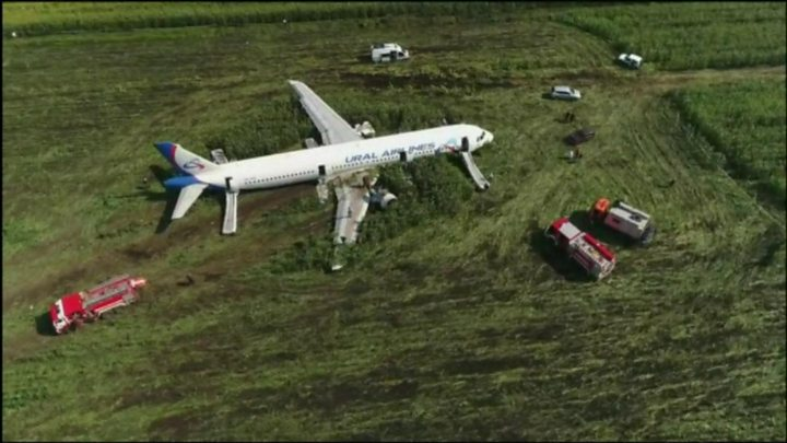 The Airbus A321 passenger plane of Ural Airlines made an emergency landing in a cornfield near Zhukovsky International Airport