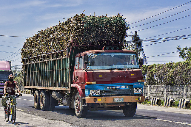 Sugarcane being transported from Uganda to Kenya. (PHOTO/File)