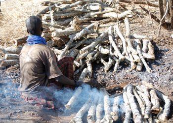 Karimojong woman burning charcoal in Rupa sub county in Moroto district last week (Photo by Jonathan Opolot