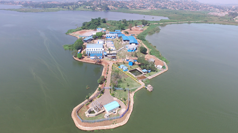 National Water and Sewerage Corporetion Ggaba water treatment plant (PHOTO/File)