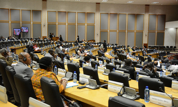 A sitting of the Pan African Parliament in Midrand, South Africa.
