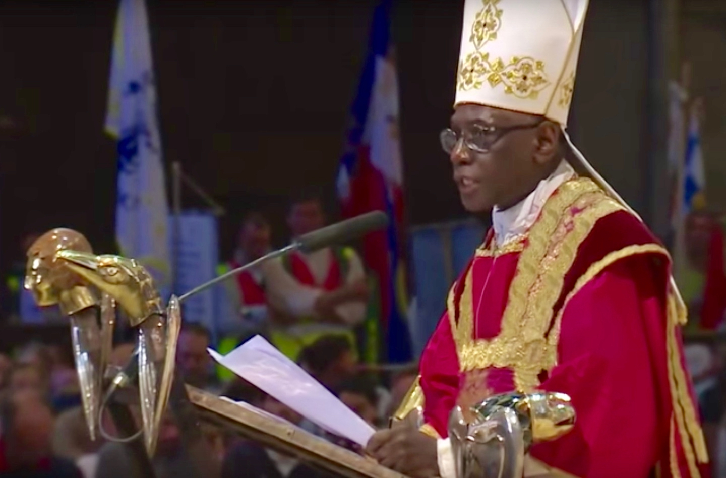 Cardinal Robert Sarah claims enemies of the Catholic Church say he's opposing the Pope. (PHOTO/Agencies).
