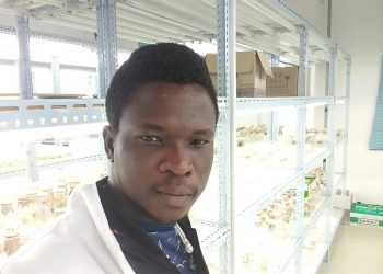 Amoo Musa Olalekan, 28-year old Nigerian, in the laboratory of Huazhong Agricultural University (PHOTO/Courtesy)