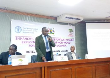 L-R  Dr. Clement Okia of Agroforestry, Mr. Issa Katwesigye, Principal Forest Officer at Ministry of Water and Environment,  Forest Sector Support Department and Mr. Antonio Querido, FAO Uganda country representative (PHOTO/Agnes Kiconco)