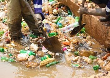 Conservationists have lauded the ban on plastic bags and vowed to lend their support to make it a success (COURTESY PHOTO)