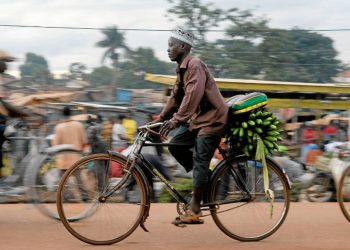 Bicycle boda-boda transport thriving in Kampala (PHOTO/File).