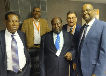 LEFT TO RIGHT: Members of the Pan African Parliament - Hon. Tekele Tessema (Ethiopia), Hon. Houssein Mohamed Ali (Djibouti) Prof. Morris Ogenga Latigo (Uganda), Hon. Hatem Bashat (Egypt) and Hon. Abdullahi Ibrahim Ali (Kenya) after the presentation of Zimbabwe's Deputy Foreign Affairs Minister in South Africa (PHOTO/PML Daily)