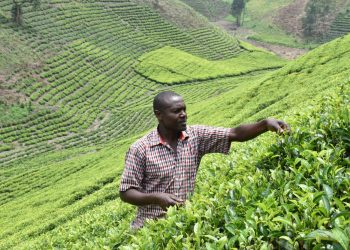 Patrick Tumuhirwe of kyenkaka cell village