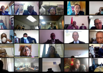 Screengrab of the FAO-AU Ministerial (virtual) Meeting on the Impacts of COVID-19 on Food Security in Africa recently. A new report indicates that COVID-19 has put digital transformation back on agenda (PHOTO/File)
