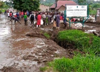 Some of the Kasese flood residents trying to look for more bodies that could be stuck in mud (PHOTO/Courtesy).