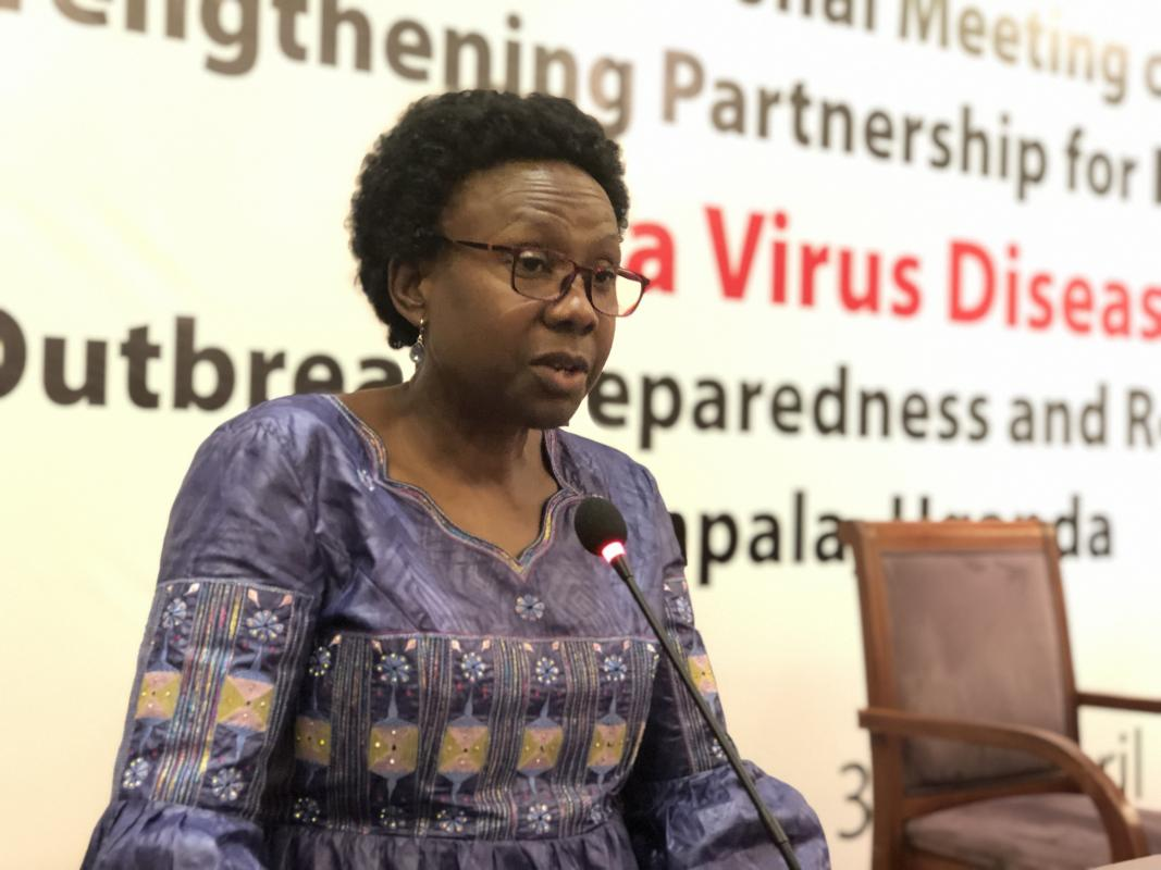 Health Minister Jane Ruth Aceng (PHOTO/File)