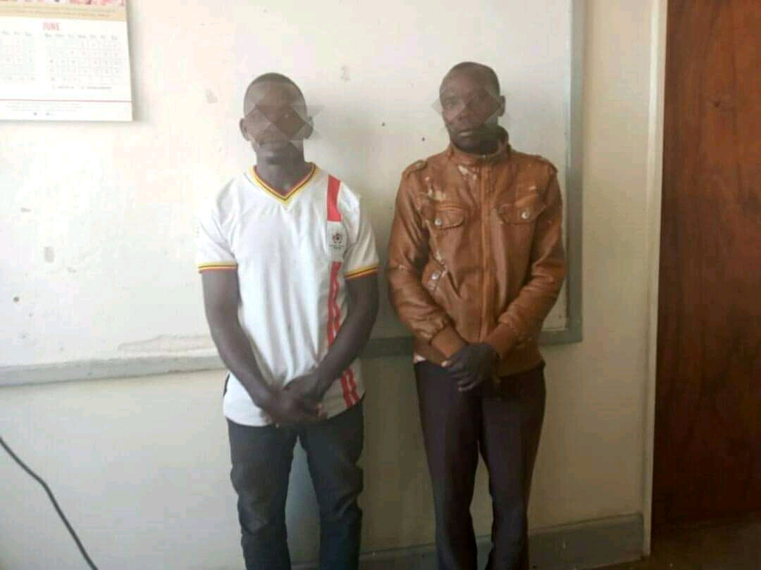 The arrested suspects (PHOTO/Courtesy).