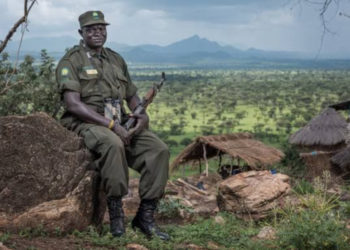 A Uuganda Wildlife Authority ranger in Kidepo National Park (PHOTO/Courtesy).