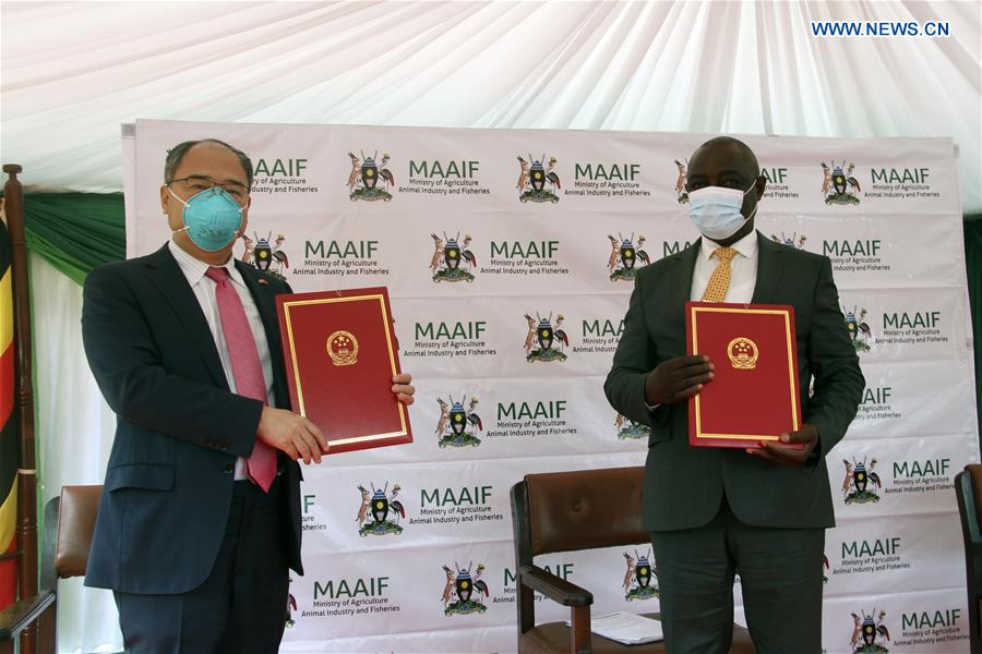 Chinese Ambassador to Uganda Zheng Zhuqiang (L) and Vincent Ssempijja, Uganda's minister of agriculture, pose for a photo after exchanging certificates during a donation ceremony in Kampala, capital of Uganda, on June 10, 2020. China on Wednesday donated an assortment of chemicals and equipment to Uganda in the fight against desert locusts in the east African country. (Xinhua/Zhang Gaiping)