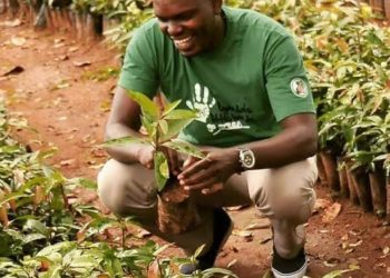 Joseph Masembe CEO and founder Little Hands Go Green (PHOTO/Courtesy)