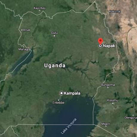 The geographical location of Napak district in Nothern Uganda