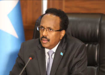 Mohamed Hussein Roble, Somalia's newly appointed Prime Minister (PHOTO/Courtesy).