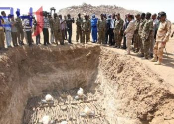 The Sudanese government on Tuesday destroyed 300,000 unlicensed firearms confiscated as part of the National Project for Collecting Firearms.