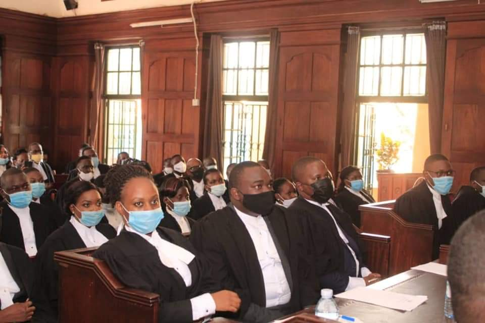 Some of the enrolled advocates of the High Court (PHOTO/Courtesy).