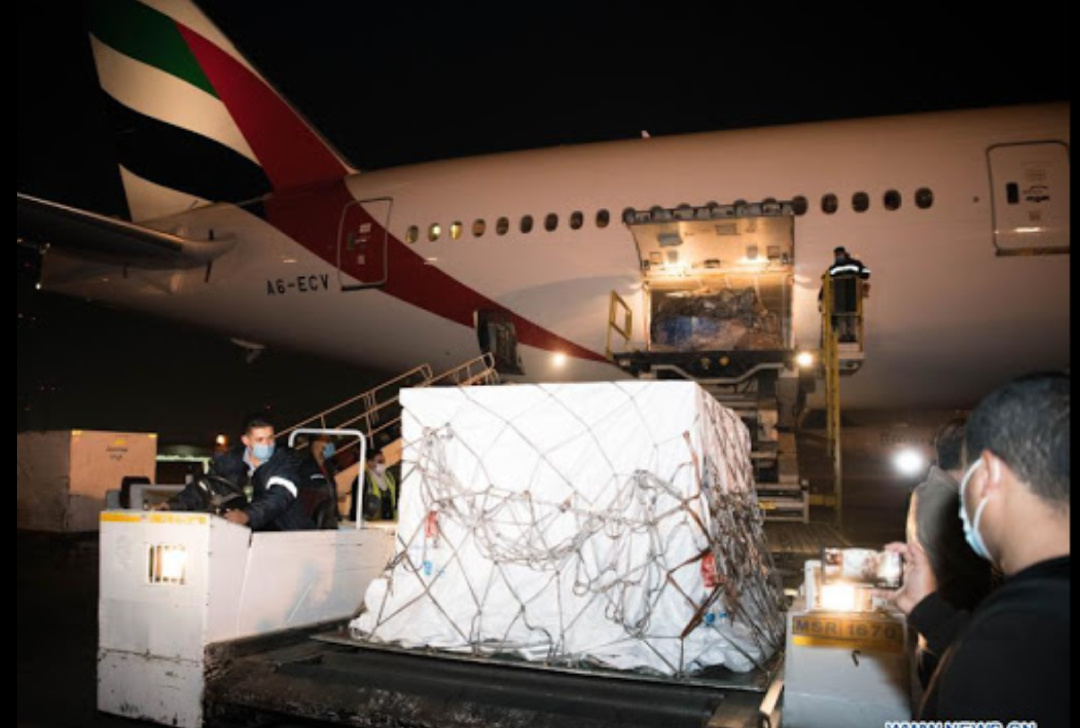 Staff members transfer the first batch of Chinese anti-coronavirus vaccine in Cairo International Airport, Egypt, Dec. 10, 2020. Egypt received the first batch of Chinese anti-coronavirus vaccine late on Thursday to help fight against the COVID-19 epidemic (Xinhua/Wu Huiwo).