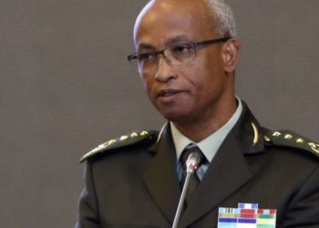 The Ethiopian National Defence Force on Wednesday afternoon announced the death of former Ethiopian foreign minister, Seyoum Mesfin during a battle in the country's northern Tigray regional state.