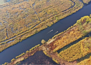 Aerial photo taken on Nov. 5, 2020 shows the scenery of the Baiyangdian Lake in Xiongan, north China's Hebei Province. The ecological environment of the lake has improved a lot in recent years (Xinhua/Mu Yu).