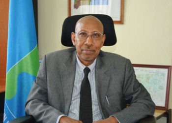 Nile Basin Initiative Secretariat Executive Director, Prof. Seifeldin Hamad Abdalla (PHOTO/File).