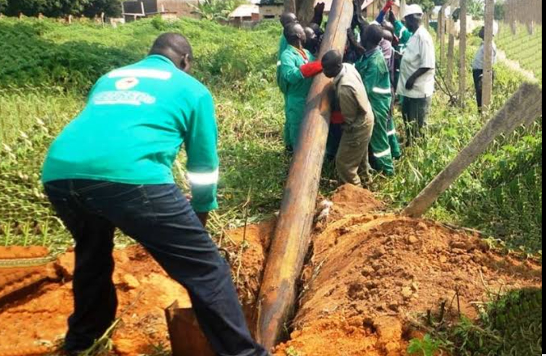Workers trying to put a electric pole in the hole (PHOTO/File).