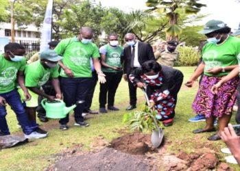 Speaker Rebecca Kadaga planting a tree (PHOTO/Courtesy).